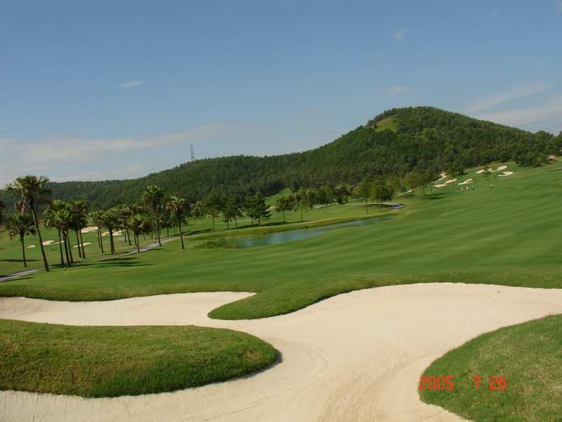 golf-tour4