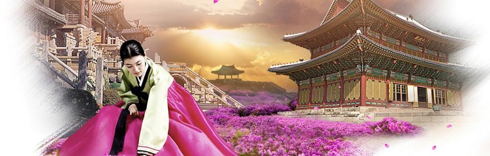 SEOUL – ĐẢO NAMI – TRƯỢT TUYẾT YANGJI PINE